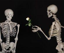 ljubav kostura